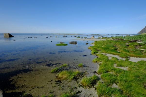 Sur la côte des Vesteralen en Norvège