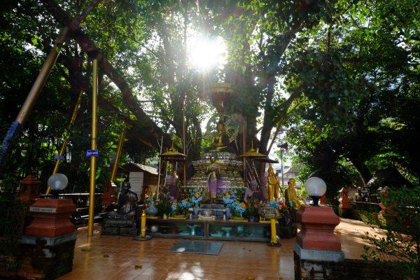 visiter Chiang Mai et ses magnifiques temples