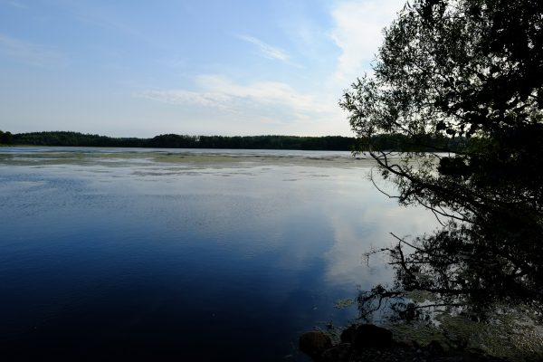 La Suède l'un des quatre pays scandinaves