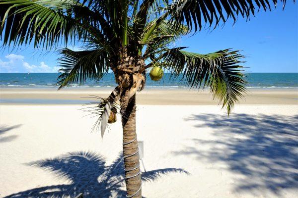 que faire à Hua Hin? Profiter de la plage tout simplement