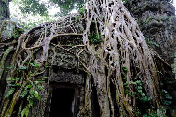 Où partir en Novembre, et pourquoi pas visiter les temples d'Angkor