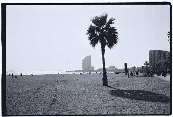 Les bonnes adresses, Où trouver les plages de Barcelone