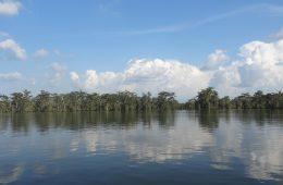 Louisiane l'un des états des Etats-Unis
