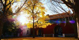 Les plus beaux endroits de Pékin