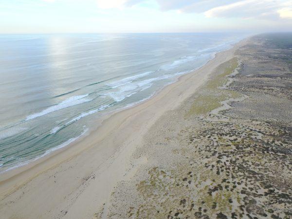 La Côte d'Argent, le Cap Ferret hors saison