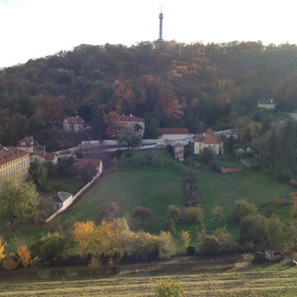 Les vignes et la colline de Petrin