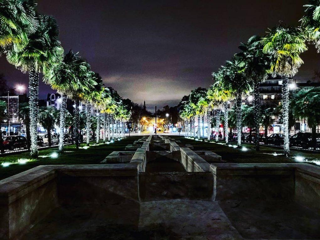 Palmiers et belle perspective à Paris