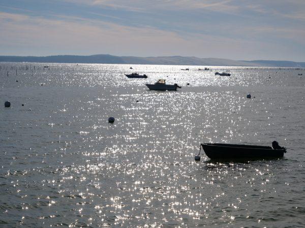 Quelques bateaux au mouillage attendent patiemment l'hiver