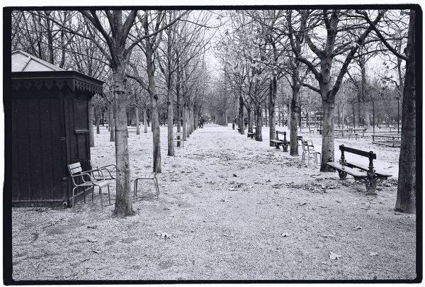 Les allées du jardins du Luxembourg à Paris