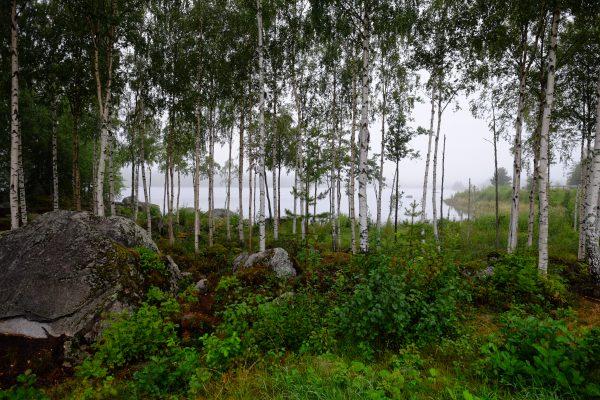 Un lac dans le centre de la Suède