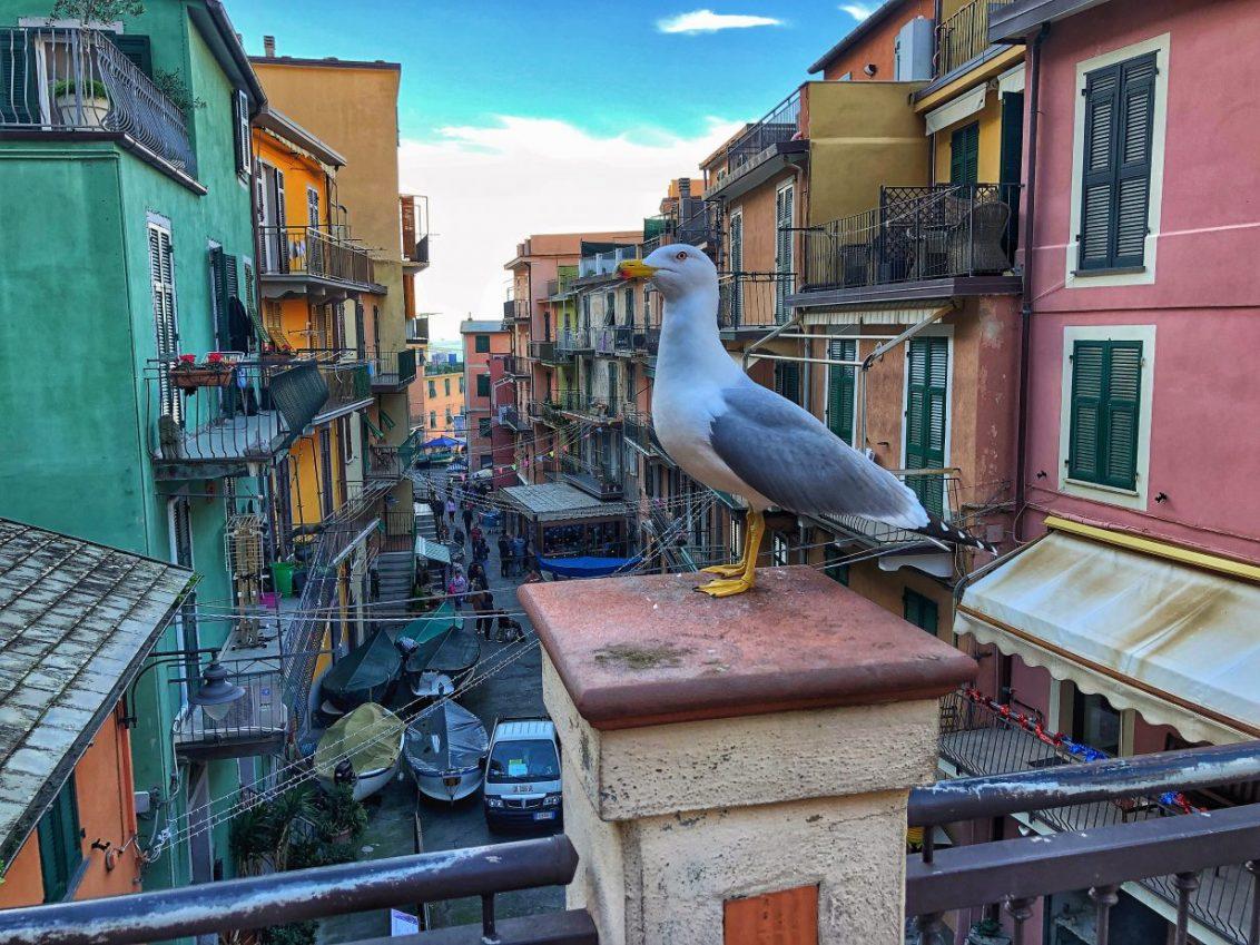 Dans les rues colorées de Cinque Terre