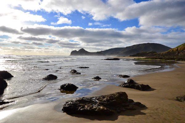Sur l'île du Nord en Nouvelle-Zélande