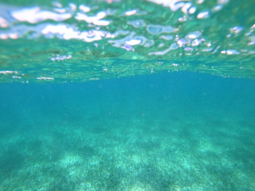 Les fonds sous-marin à Cancun
