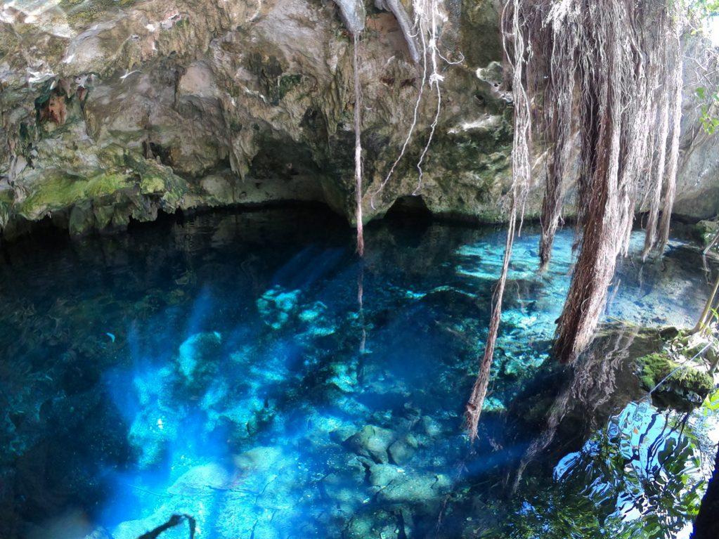 L'eau translucide des cenotes de Tulum
