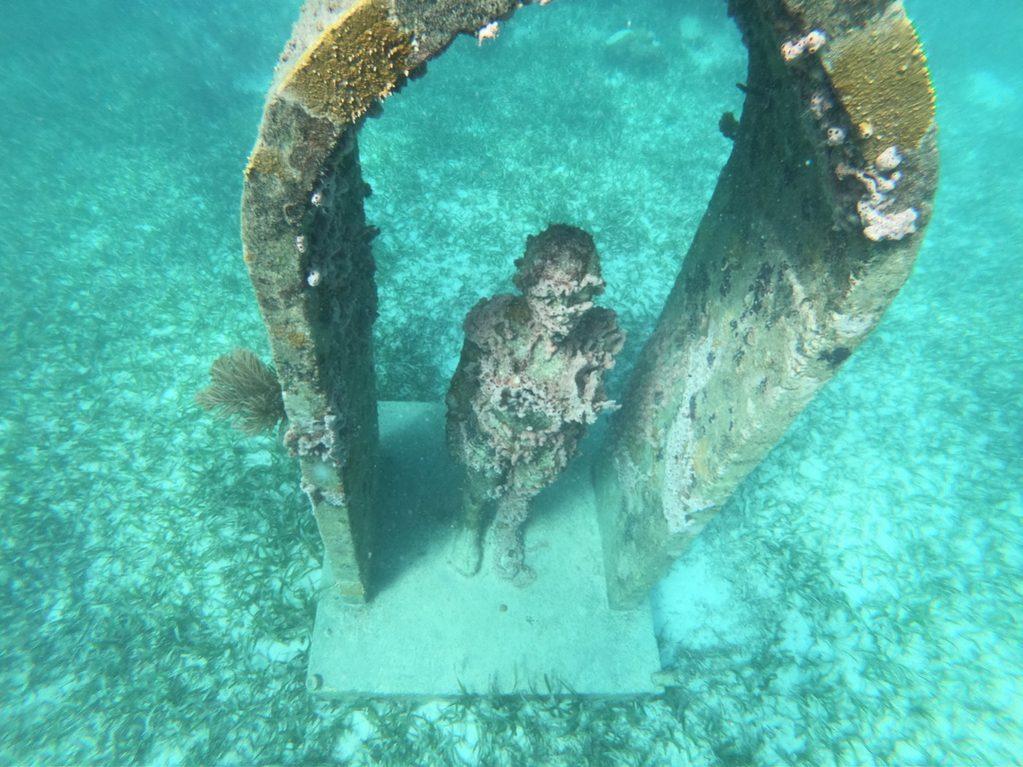 Un face à face étonnant à Cancun