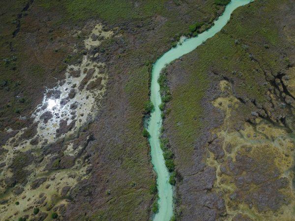 Sian Ka'an, une réserve naturelle sur la presqu'île du Yucatan