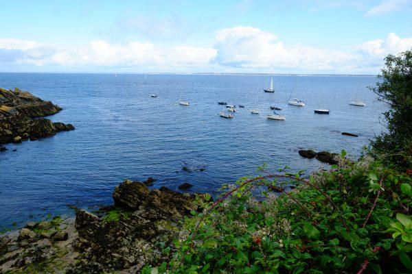 L'une des îles du Morbihan