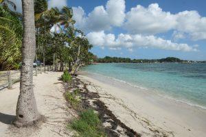 La plus belle plage de Guadeloupe
