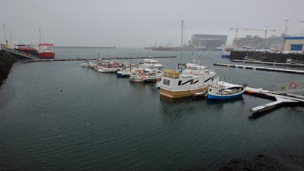 Le port de Reykjavik sous la brume en hiver