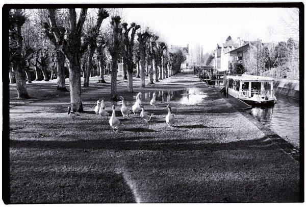 Savez-vous que vous pouvez rejoindre la capitale via ce canal?