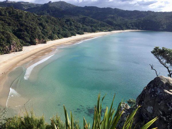 Une plage dans le nord de la Nouvelle-Zélande