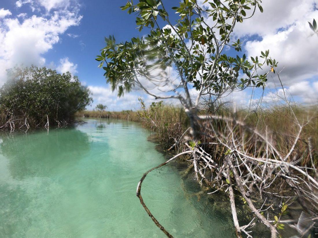 L'eau turquoise des lagunes du Mexique