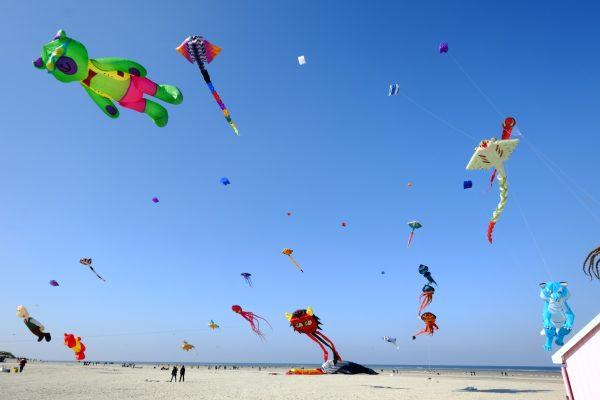 Des cerfs-volants sur la plage de Berck