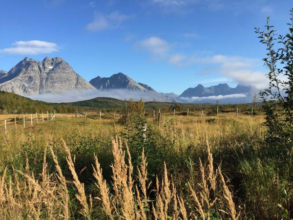 Un après midi d'été en Norvège