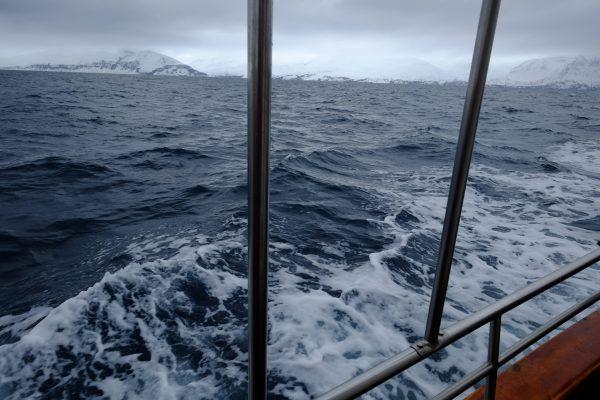 Parfois en mer ça tangue un peu