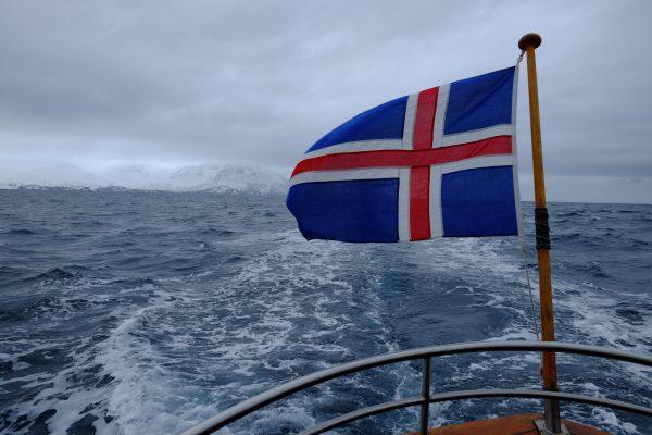 Les pays qui autorisent la chasse à la Baleine