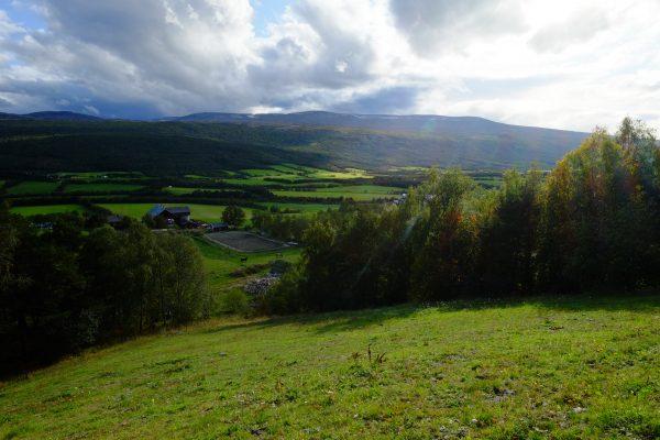 Vert et écologie un leitmotiv en Norvège