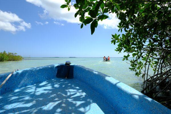 en bateau sur les lagunes du Yucatan
