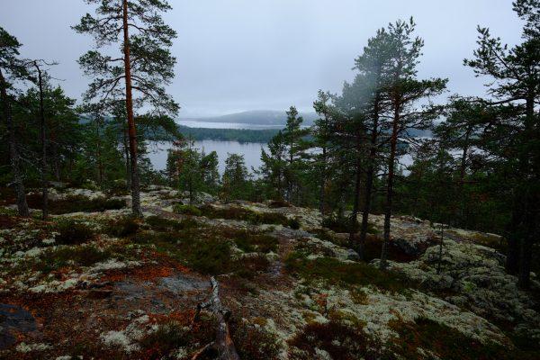 La Suède des lacs et de la brume