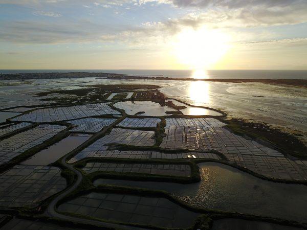 La Loire Atlantique un des départements les plus peuplés de France