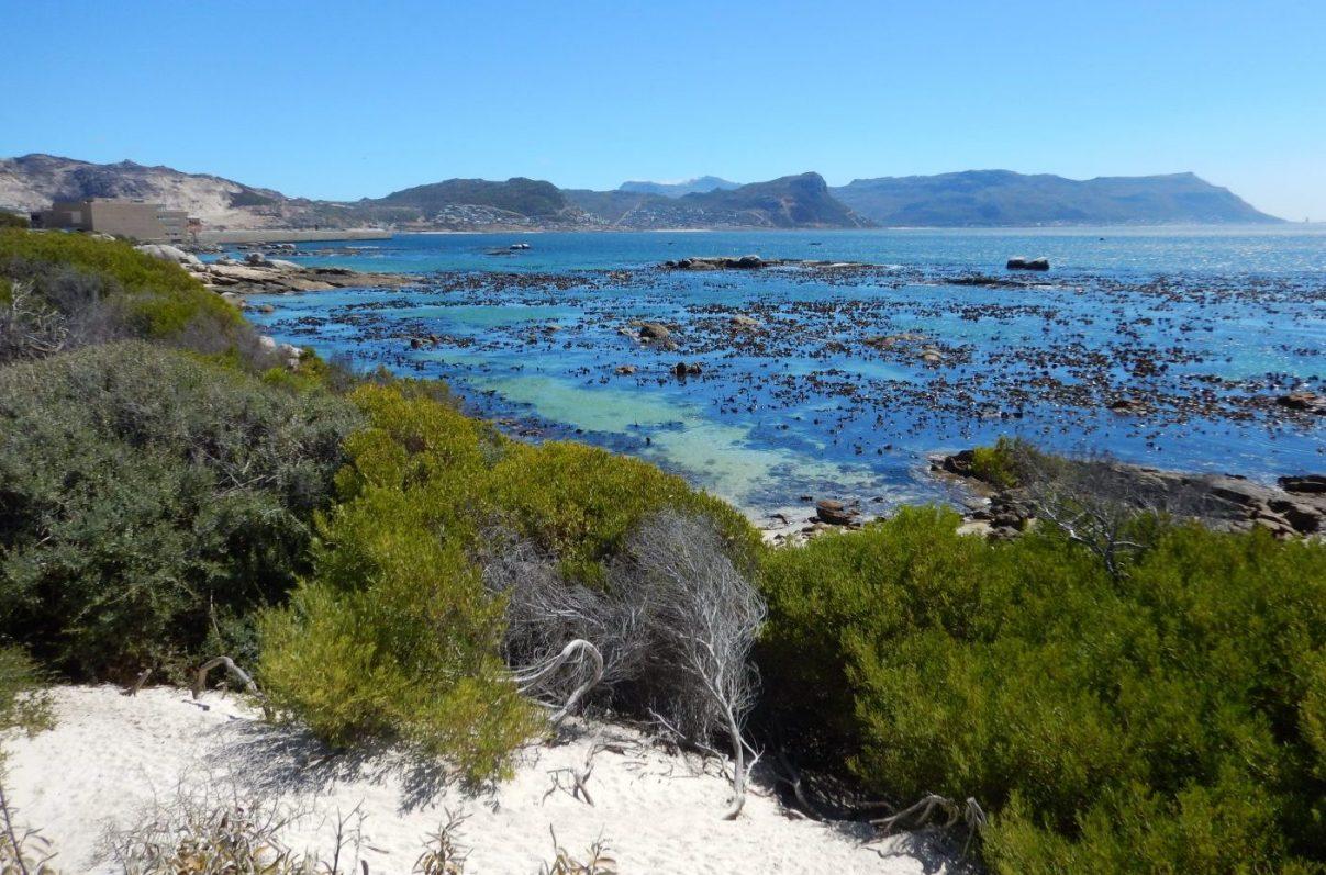 Un paysage à côté du Cap en Afrique du Sud