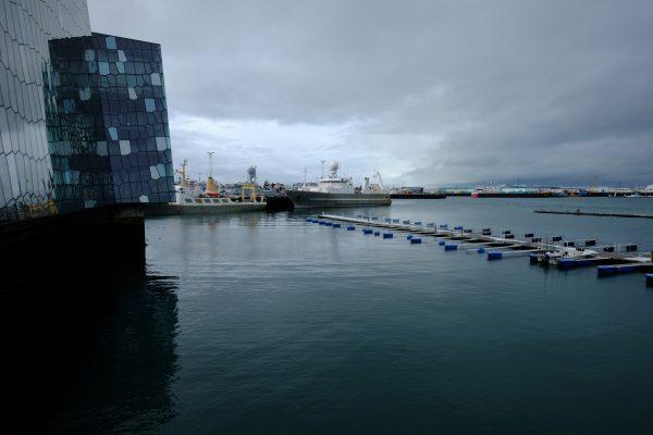 Sur les quais de Reykjavik