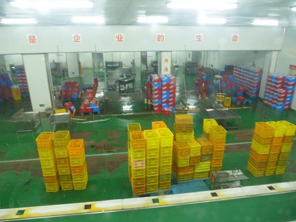 Une fabrique aseptisée dans le nord-est de la Chine