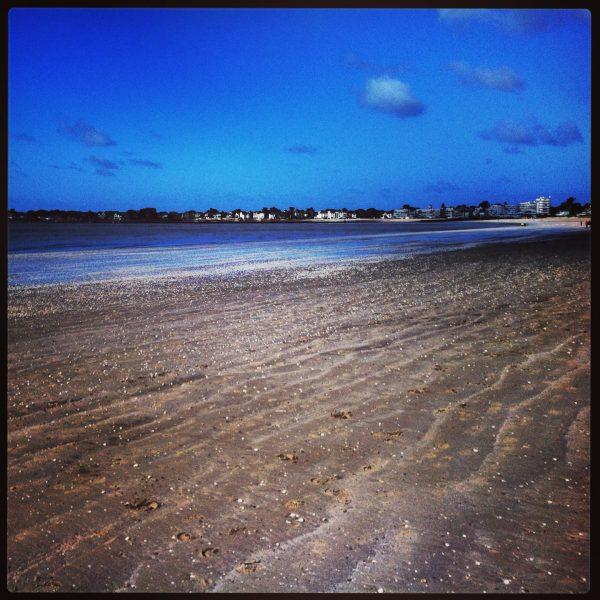 Les petits coquillages de la plage Benoît