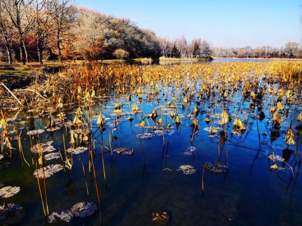 Beihu, un superbe sanctuaire naturel en Chine