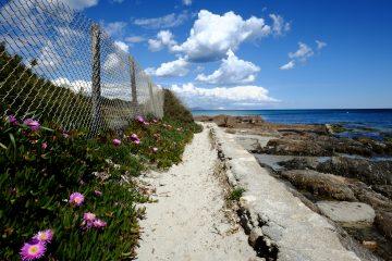 A la recherche des plus belles plages de Saint-Tropez
