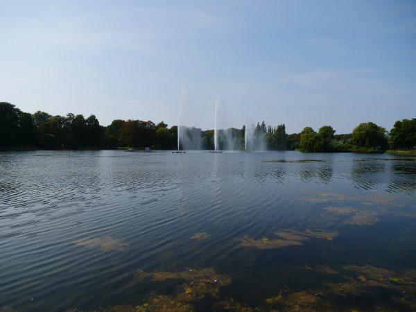 Visiter les parcs de Malmö une activité incontournable à faire