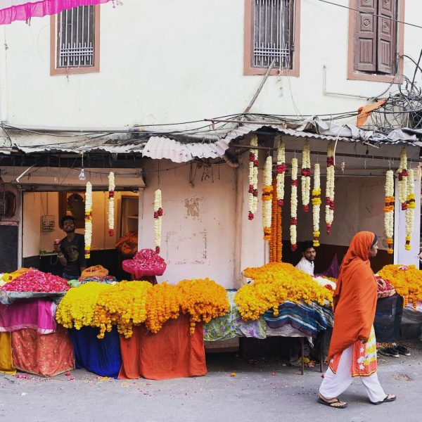 Udaipur une ville agréable et surprenante