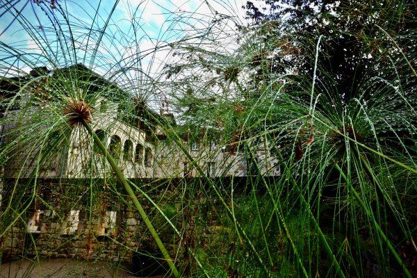 Le jardin suspendu de Figeac