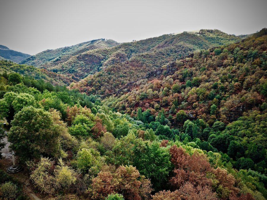 L'automne en Aveyron
