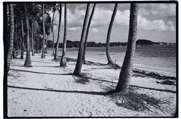 L'une des plus belles plages de Guadeloupe