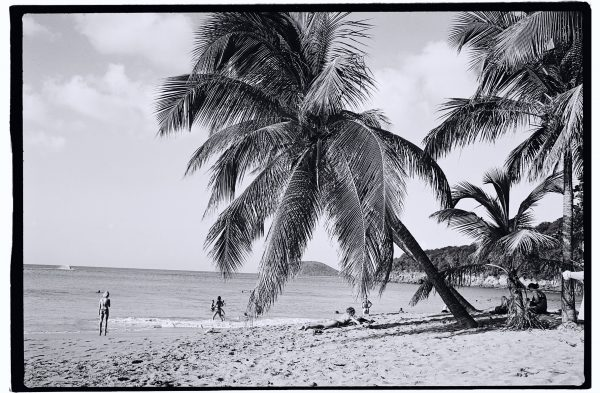 Une jolie plage en Guadeloupe