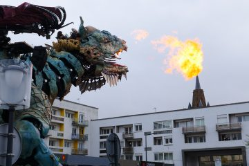 Un vrai dragon a emménagé à Calais