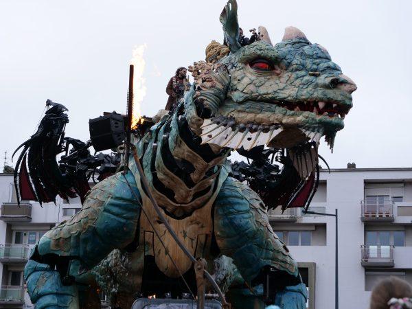 Le Dragon de Calais découvre son nouveau terrain de jeu