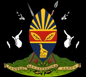 Les armes d'Harare au Zimbabwe