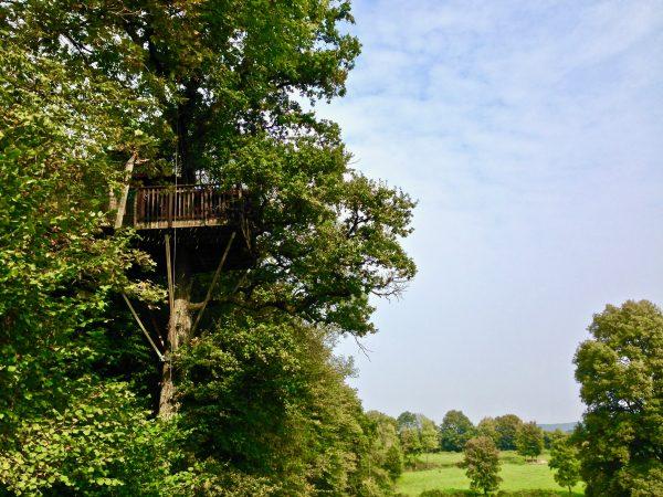 Une cabane dans un arbre
